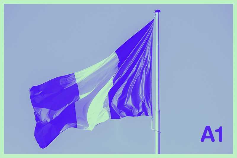 mejores libros de francés para preparar nivel A1