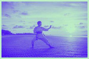mejores libros de karate